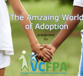 The Amazing World of Adoption