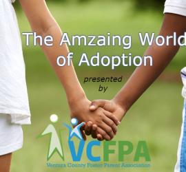 The Amazing World of Adoption